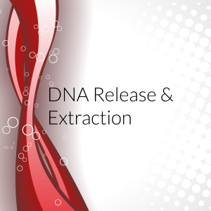 dna release & extraction