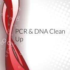 PCR & DNA clean up