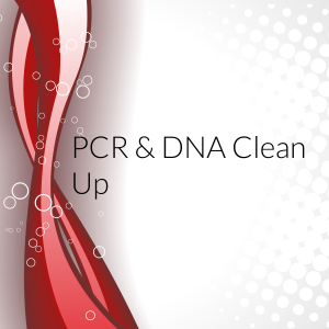 PCR & DNA clean up
