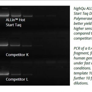 Allin hot start taq polymerase