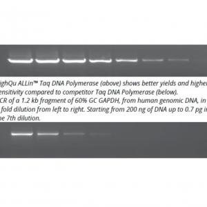 highqu allin taq polymerase