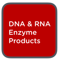 clent life science dna + rna enzyme