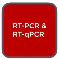 clent life science rtpcr + rtqpcr