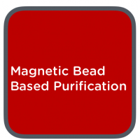 Magnetic bead based puritifcation