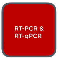 RT-PCR & RT-QPCR
