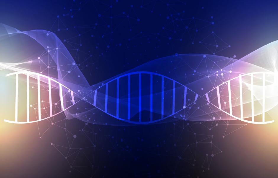 DNAimage1
