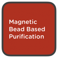 magnetic bead based purification
