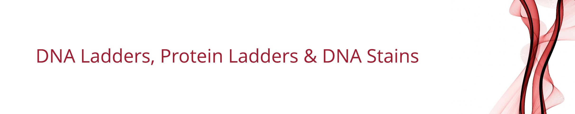 DNA ladders page
