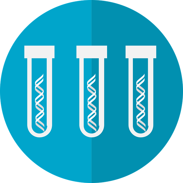 Everything You Need to Know about Taq Polymerase